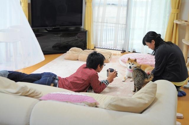 猫とともだちカレンダー_a0126590_23005466.jpg