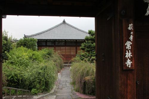 萩の寺 常林寺_e0048413_17114546.jpg
