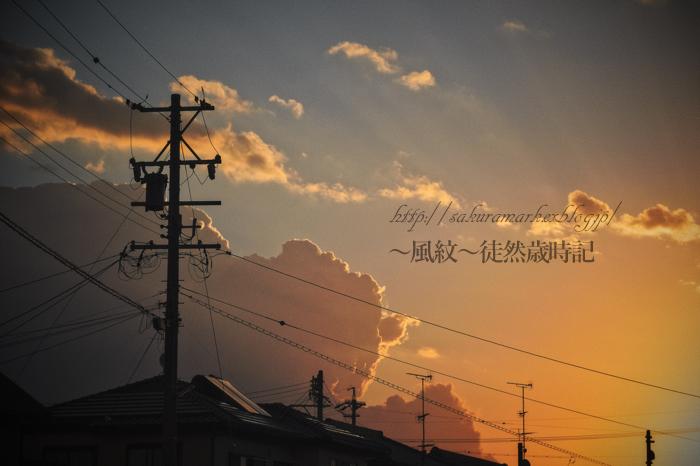 晩夏の夜明け。_f0235723_21154715.jpg