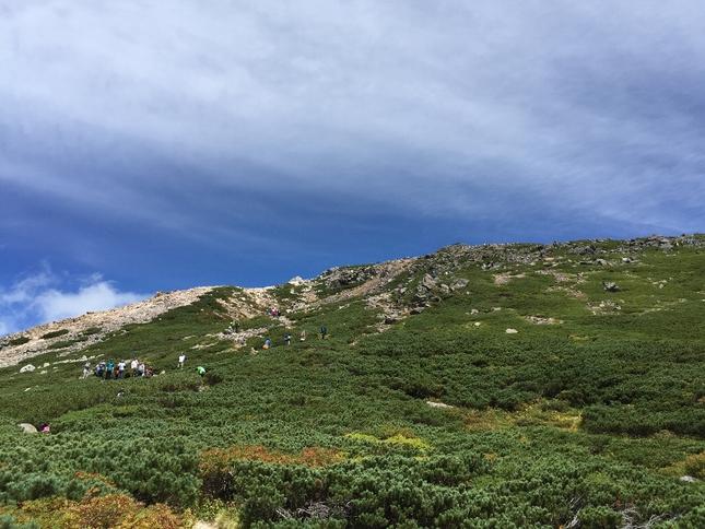 白山登山(御前峰~砂防ルート)_c0113733_2256216.jpg