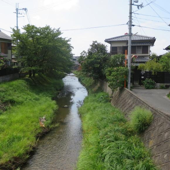 佐保川下り(歩いて)_c0001670_09220581.jpg