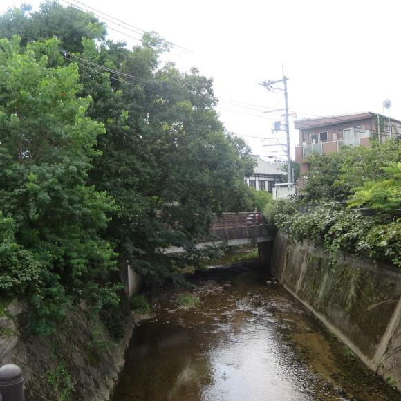 佐保川下り(歩いて)_c0001670_09241067.jpg