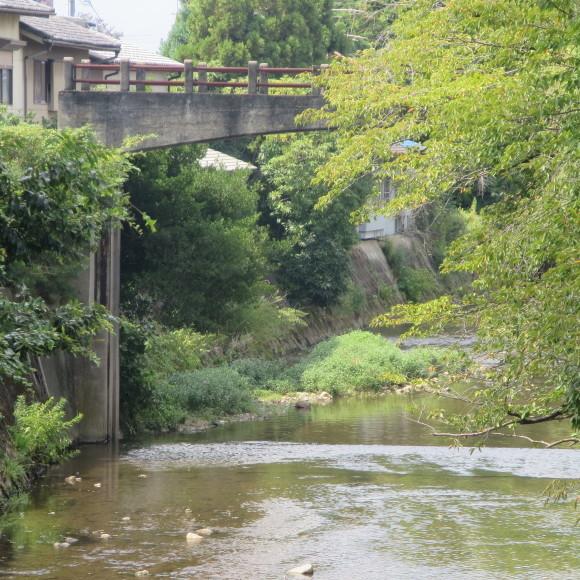 佐保川下り(歩いて)_c0001670_09250550.jpg