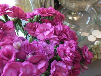 オークリーフ(菊の花)_f0049672_12564966.jpg
