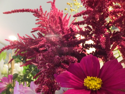 オークリーフ(菊の花)_f0049672_12575480.jpg