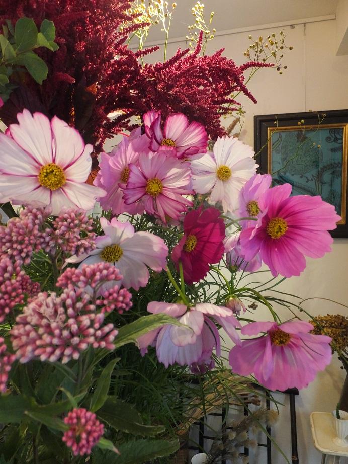 オークリーフ(菊の花)_f0049672_1258248.jpg