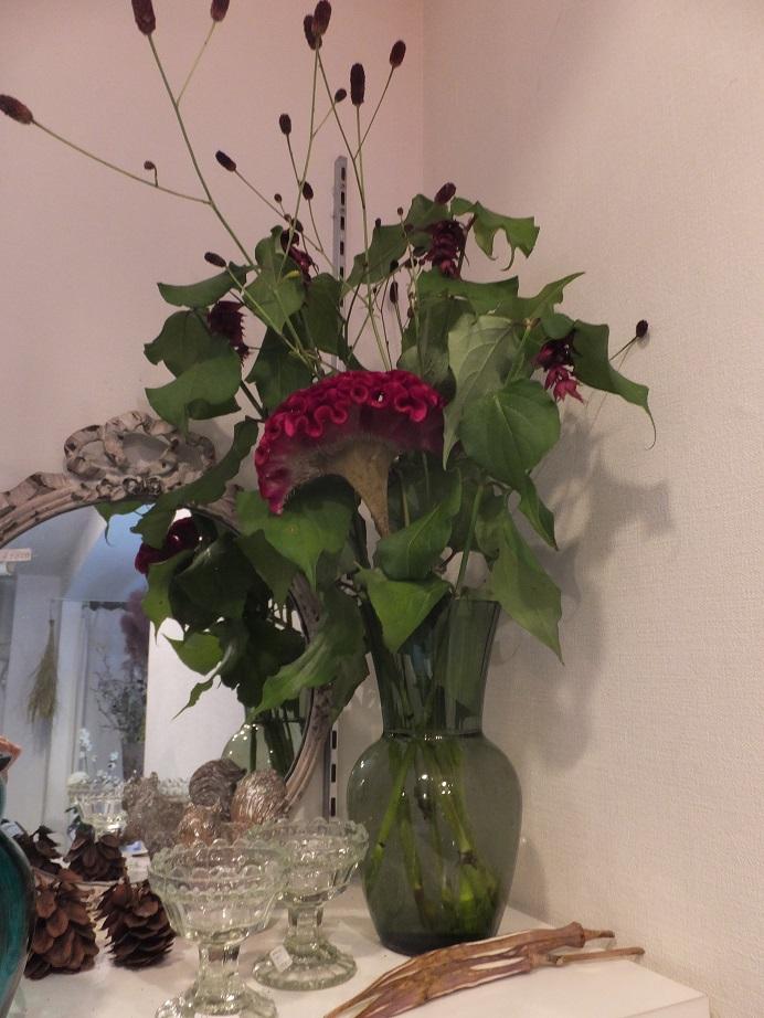 オークリーフ(菊の花)_f0049672_1324270.jpg