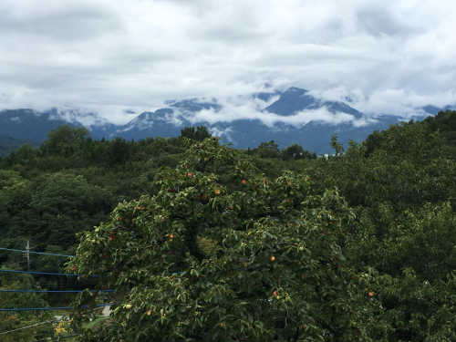 台風の前、秋が近づいてきます。_d0338282_08353852.jpg