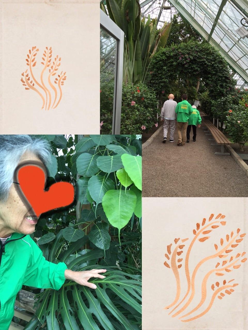 熱帯植物園へ_c0205393_20334578.jpg