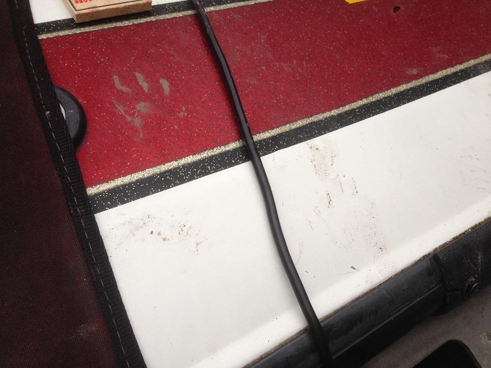 アホビルダー、アライグマにバスボートを食われる_d0145899_21395486.jpg