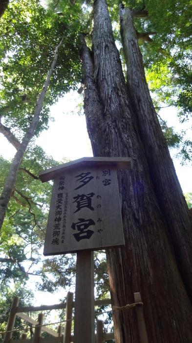 お伊勢参り② おはらい町ランチ→外宮参り_b0290816_16561111.jpg