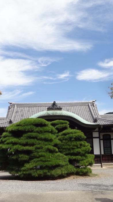 お伊勢参り② おはらい町ランチ→外宮参り_b0290816_16590034.jpg