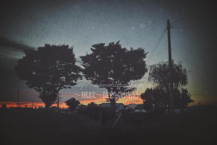 夕闇の中の影法師_f0235723_18184522.jpg