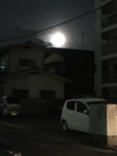 中秋の名月⁉︎_c0079640_21522935.jpeg