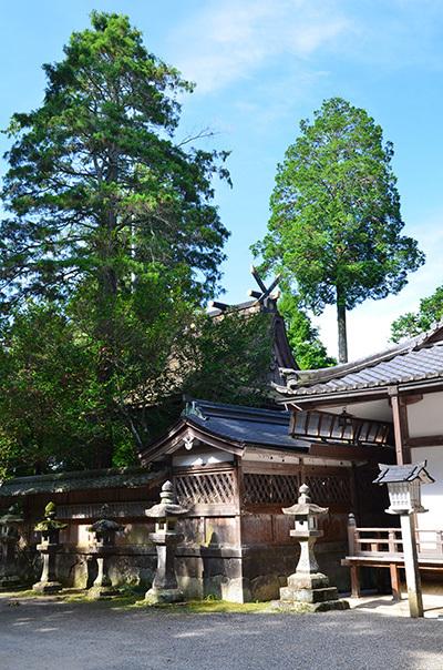 初瀬街道 阿保宿から二本木宿を行く_e0164563_09452240.jpg