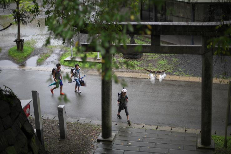 8月の秋田14 雨の日 (5cut)_e0342136_19262199.jpg
