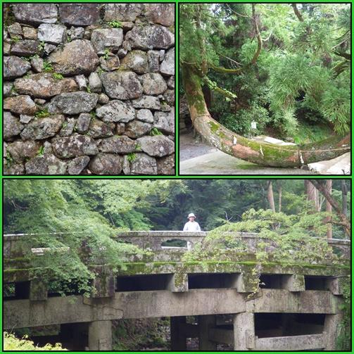 京都・滋賀の山旅・・1日目_e0164643_1524171.jpg