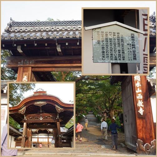 京都・滋賀の山旅・・1日目_e0164643_15284527.jpg