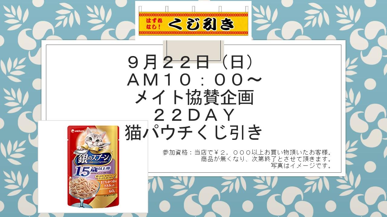 160921 22DAYイベント告知_e0181866_1042838.jpg