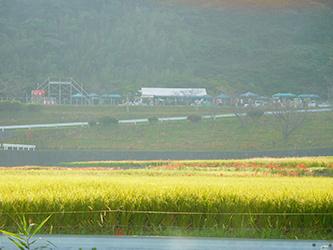 大変な台風でしたね〜。_b0057675_20423144.jpg