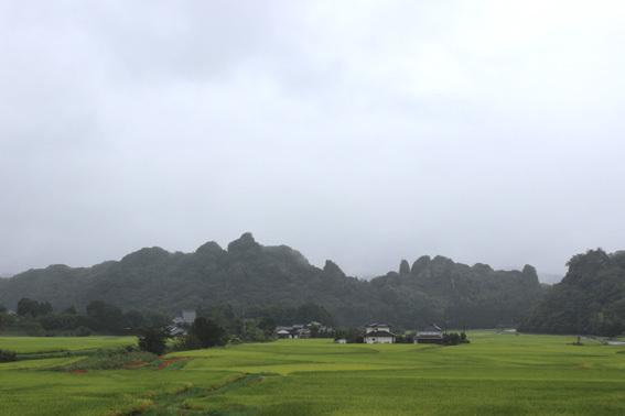 おおいたの美しい風景☆田染荘の棚田と彼岸花の赤_a0329820_13365766.jpg