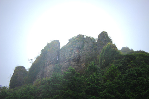 おおいたの美しい風景☆田染荘の棚田と彼岸花の赤_a0329820_13370593.jpg
