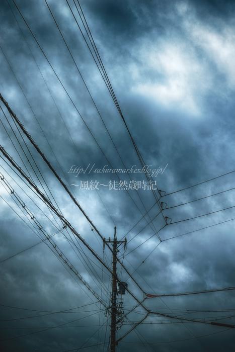雨雲広がる。_f0235723_1555754.jpg