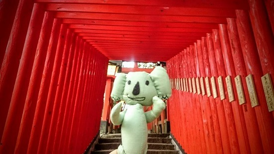出雲大社だけじゃない、島根のパワースポット【太皷谷稲成神社】(津和野)_b0141240_17202532.jpg