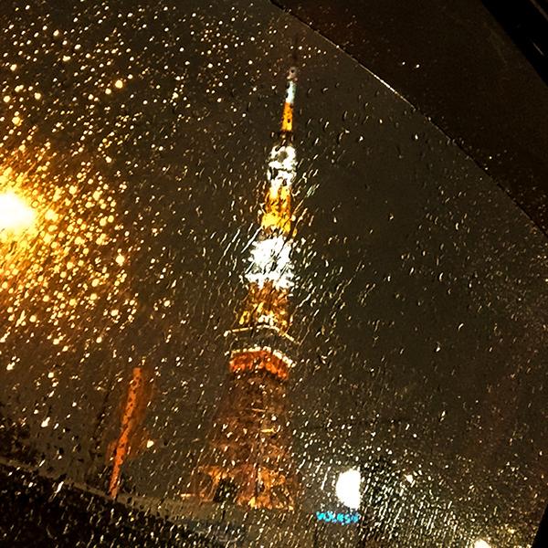 雨、雨。そして雨_a0003650_2301688.jpg
