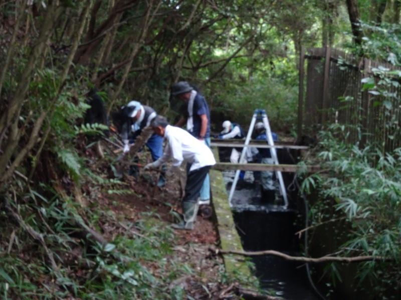 ダムの作り直し・・・うみべの森_c0108460_16522343.jpg