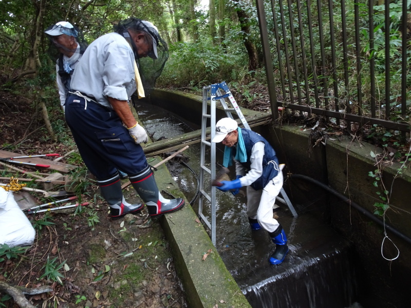 ダムの作り直し・・・うみべの森_c0108460_16563353.jpg