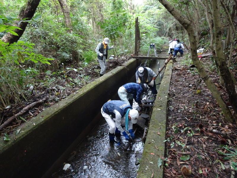 ダムの作り直し・・・うみべの森_c0108460_16563665.jpg