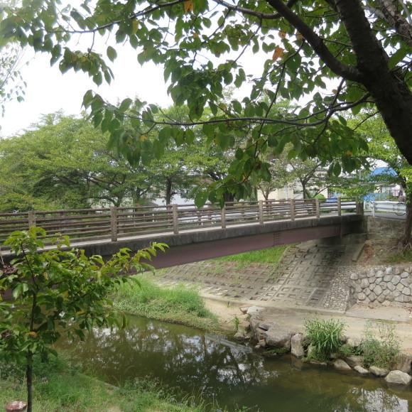 佐保川下り 歩いて歩いて_c0001670_20401197.jpg