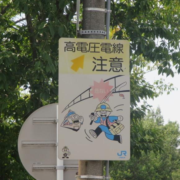 佐保川下り 歩いて歩いて_c0001670_20413856.jpg