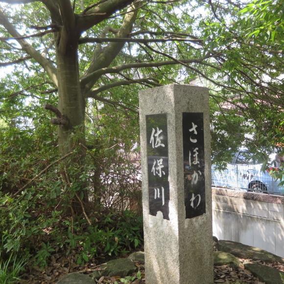 佐保川下り 歩いて歩いて歩いて_c0001670_20420274.jpg