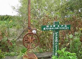 南幌フットパス(3)幌向運河沿いを西へ_f0078286_11224733.jpg