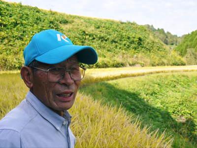 菊池水源棚田米 水にこだわる匠のお米!!今年も棚田に黄金色の稲穂がなびいています!_a0254656_1759255.jpg