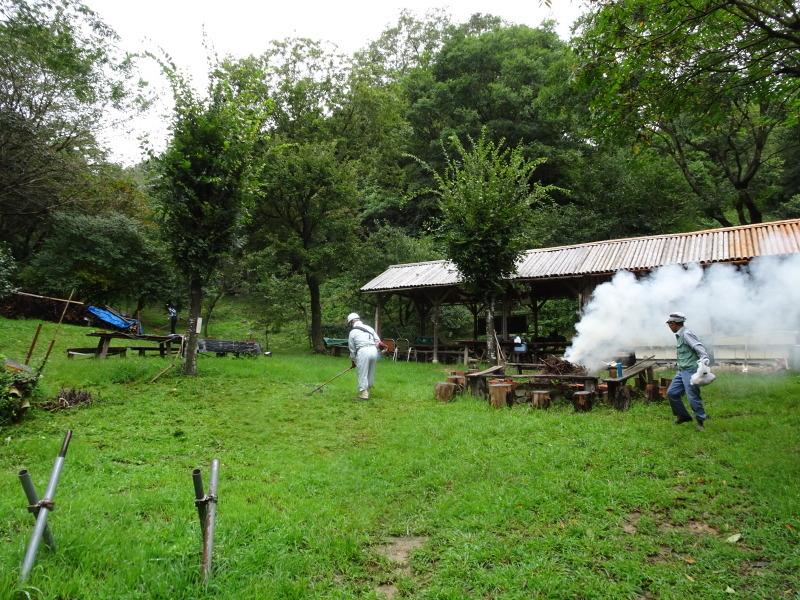 来客の対応で草刈り・・・孝子の森_c0108460_18003578.jpg