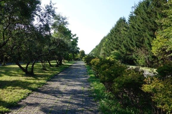 札幌で夏休み その13 モエレ沼公園へ_e0230011_19395427.jpg