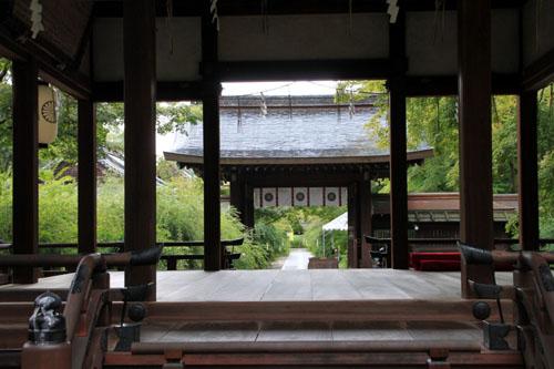 梨の木神社 萩まつり_e0048413_14325624.jpg