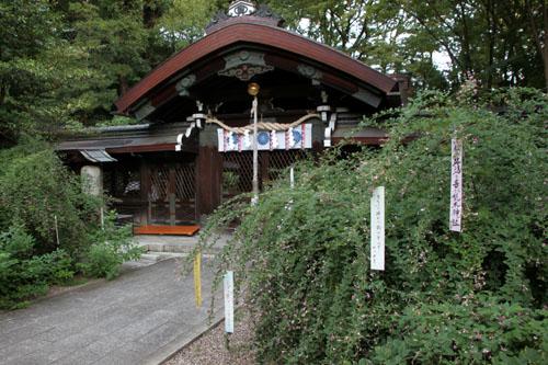 梨の木神社 萩まつり_e0048413_1433103.jpg