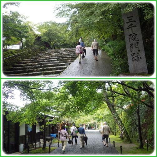 京都・滋賀の山旅・・3日目_e0164643_21515711.jpg