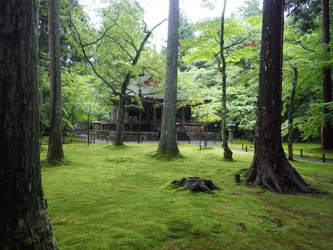 京都・滋賀の山旅・・3日目_e0164643_21532147.jpg