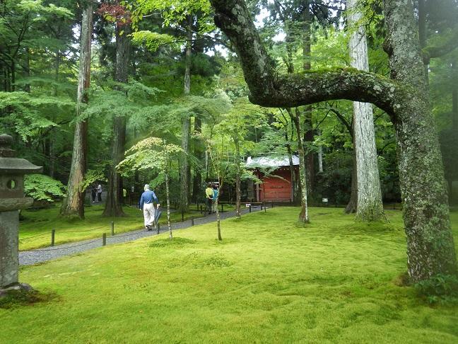 京都・滋賀の山旅・・3日目_e0164643_21545682.jpg