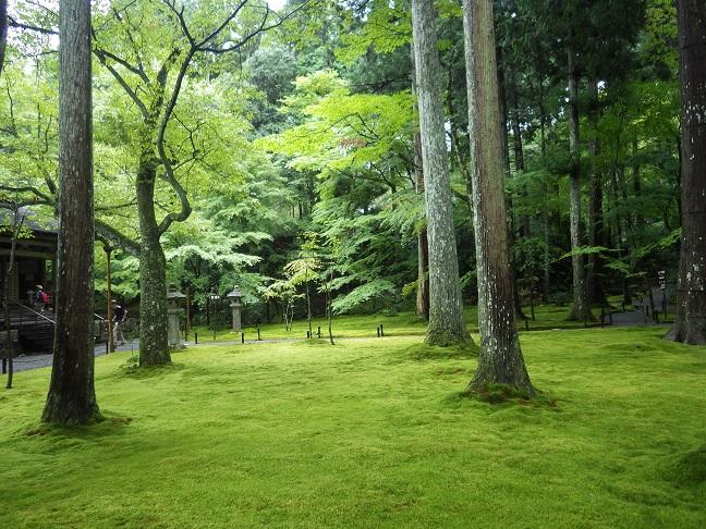 京都・滋賀の山旅・・3日目_e0164643_2159898.jpg