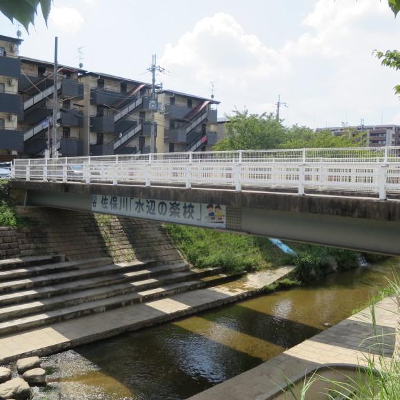 佐保川下り 歩いて歩いて歩いて_c0001670_07583945.jpg