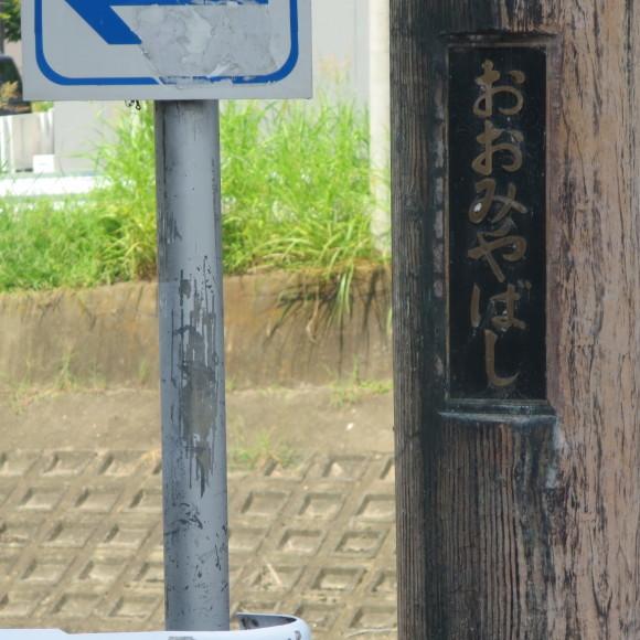 佐保川下り 歩いて歩いて歩いて_c0001670_08002049.jpg