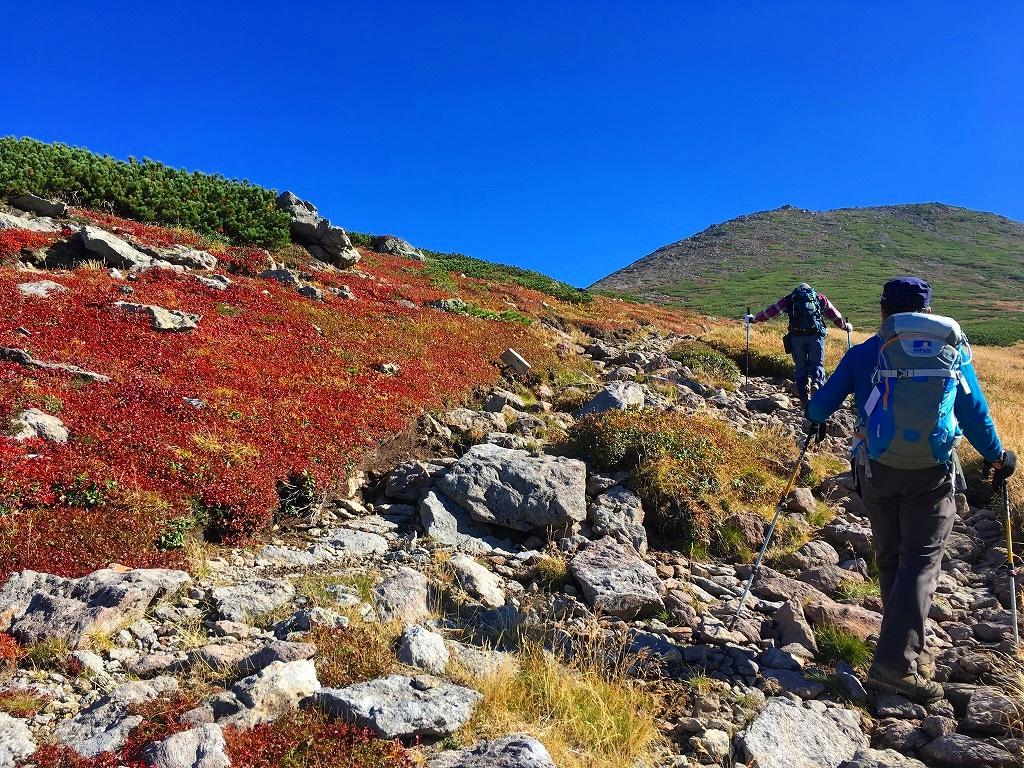 愛別岳の紅葉、9月22日-同行者からの写真-_f0138096_10391959.jpg
