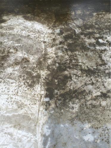 雨上がりのコンクリートがおもしろくて、つい撮ってしまった!シリーズ  #2_f0155808_10510963.jpg