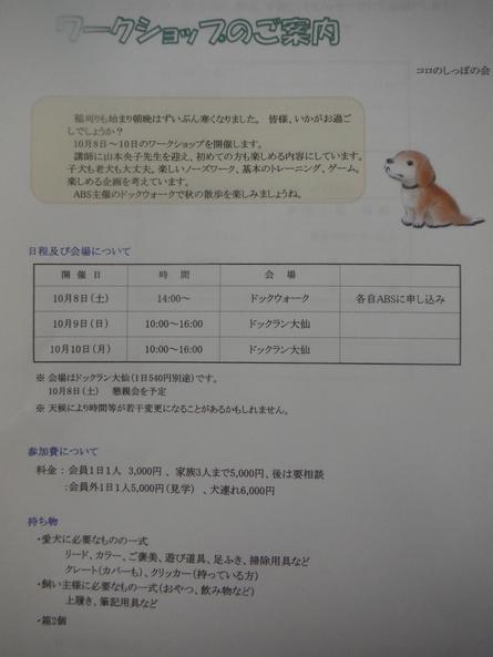 f0170713_13264246.jpg